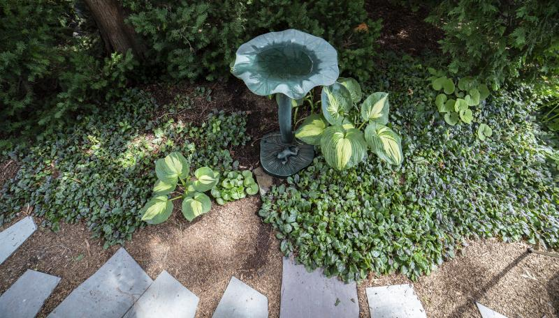 Image: CHA garden.